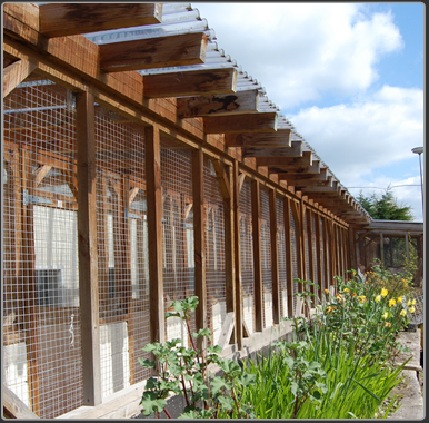 cattery northwich cheshire